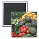 Vegetables 2 2 inch square magnet