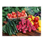 Vegetables 3 postcard