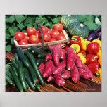 Vegetables 3 poster