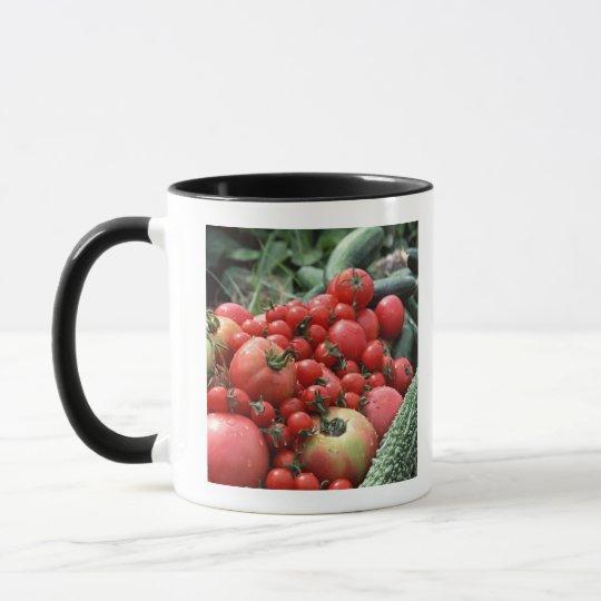 Vegetables 4 mug