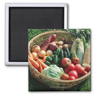 Vegetables 5 2 inch square magnet