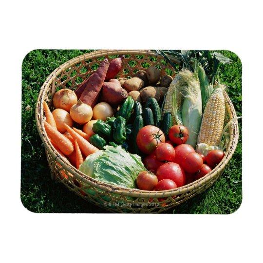 Vegetables 5 magnet