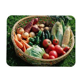 Vegetables 5 rectangular photo magnet