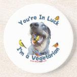 Vegetarian Bird Dog Coasters