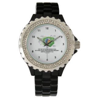 Vegetarian Manner Of Living Human Temperament Wristwatches