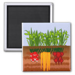Veggie Garden Refrigerator Magnets