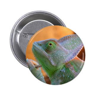 Veiled Chameleon 2 Inch Round Button