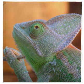 Veiled Chameleon Napkin