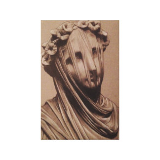 Veiled Lady- by Trent Valleau Canvas Print