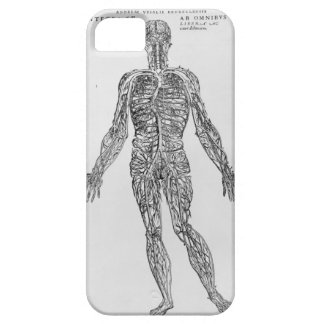 Veins and Arteries system (b/w print) iPhone SE/5/5s Case