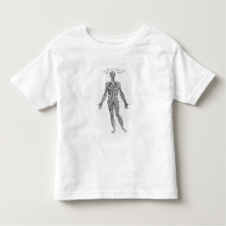 Veins and Arteries system (b/w print) Toddler T-shirt