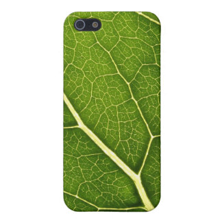 Veins iPhone SE/5/5s Cover