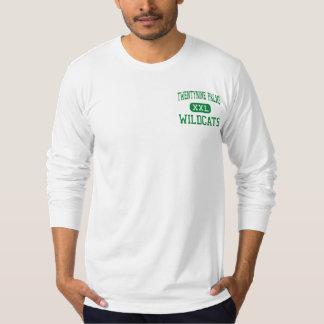 Veintinueve palmas - gatos monteses - veintinueve camisas