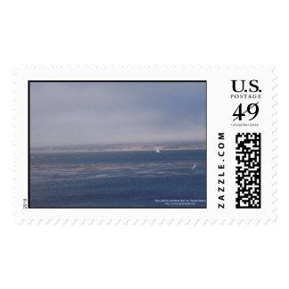 Vela a solas en sello de la bahía de Monterey