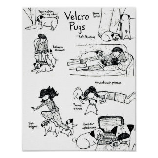 Velcro Pugs Poster