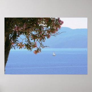 Velero del árbol de la flor del rosa de mar de Gre Posters