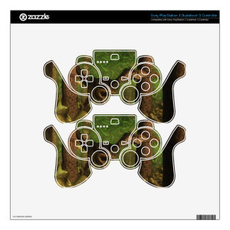 Velociraptor dinosaur in the forest PS3 controller decal