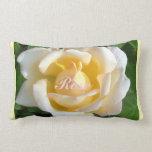 Velvet Blush Rose Pillow