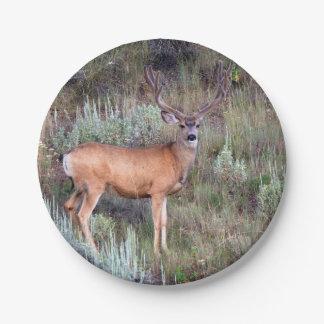 Velvet buck paper plate