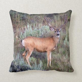 Velvet buck pillows