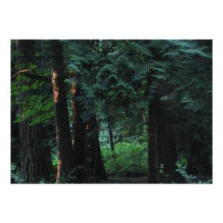 Velvet Forest Personalized Invites