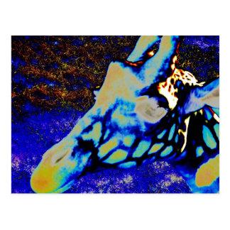 Velvet Giraffe Postcard