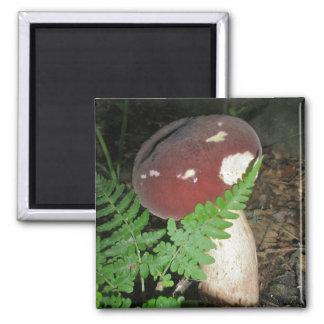 Velvet Mushroom Magnet
