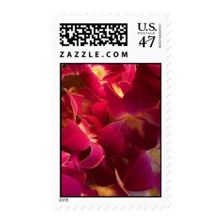 Velvet Postage Stamp
