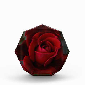 Velvet Red Rose of Romance Award