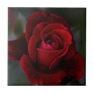 Velvet Red Rose of Romance Ceramic Tile