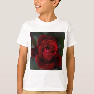 Velvet Red Rose of Romance T-Shirt