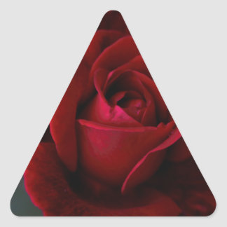 Velvet Red Rose of Romance Triangle Sticker