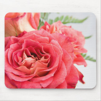Velvety Pink Roses Mouse Pad