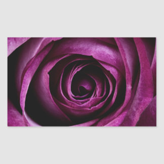 Velvety Purple Rose Rectangular Sticker