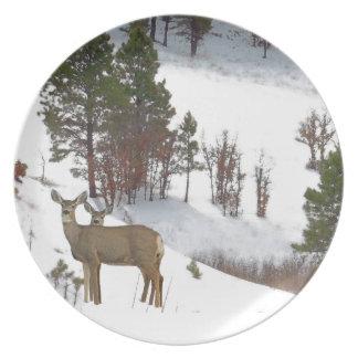 Venado de cola blanca en placa de cena de la nieve plato de cena