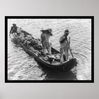 Vendedores ambulantes del plátano en un barco en P Impresiones