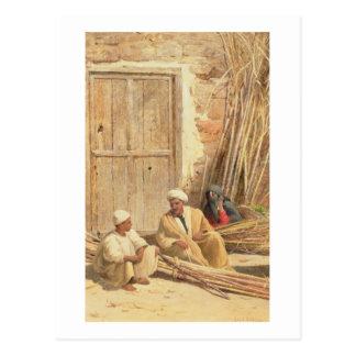 Vendedores de la caña de azúcar, Egipto, 1892 (ace Postal