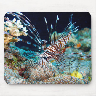 Venemous Lionfish Great Barrier Reef Coral Sea Mouse Pad