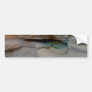 Veneno en las rocas pegatina de parachoque