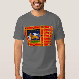 Veneto flag t shirt