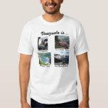 ¡Venezuela es… majestuosa! Camiseta Remeras