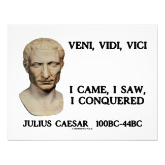 Veni, Vidi, Vici - I Came, I Saw, I Conquered shirt