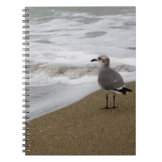 Venice Beach Bird Notebook