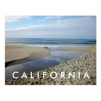 Venice Beach California Postcard