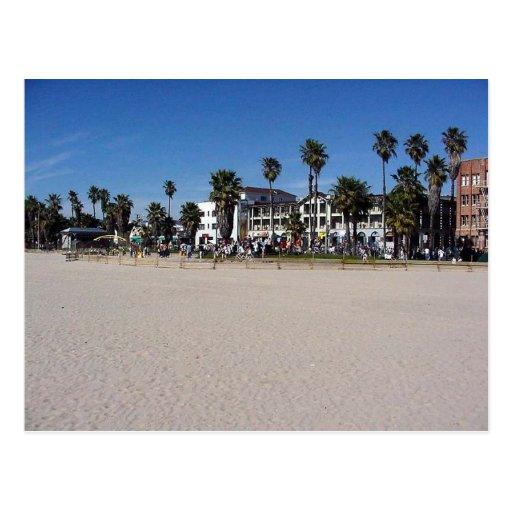 Venice Beach Drummers Postcard