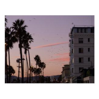 Venice Beach Post Cards