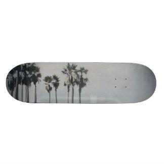 Venice Beach Skate Park Skateboard