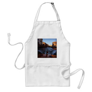 Venice by Boat Adult Apron
