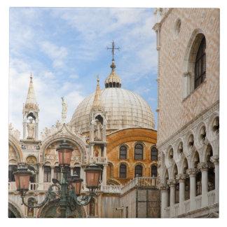 Venice, Veneto, Italy - Birds are perched on a Tile