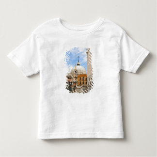 Venice, Veneto, Italy - Birds are perched on a Toddler T-shirt